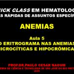 Quick-Anem-5