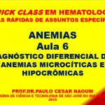 Quick-Anem-6