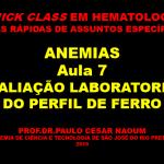 Quick-Anem-7